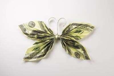 butterfly money